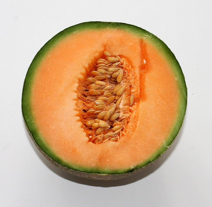 Melon Cantelope Each District Fruiterers See more of cantelope on facebook. melon cantelope each